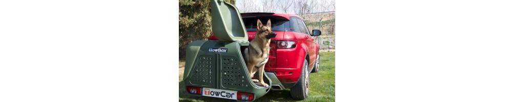 Para transportar perros con seguridad e higiene